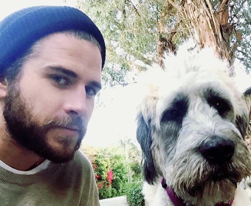 Liam Hemsworth comenta que es feliz cuando se le pregunta por Miley Cyrus