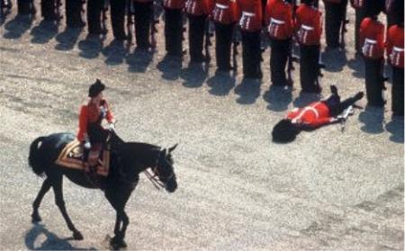 Soldado real caído