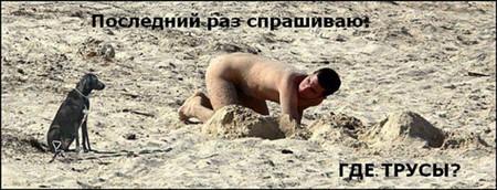 perros_playa_nudista