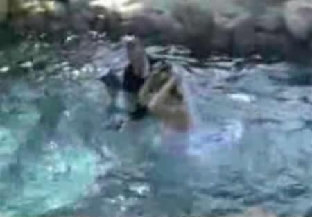 bodas_piscinas_accidentes