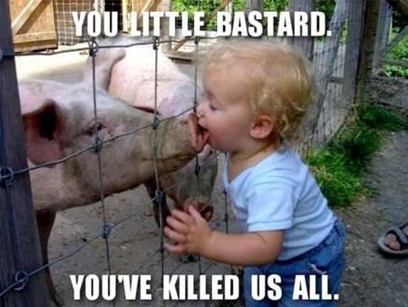 El culpable de la gripe porcina