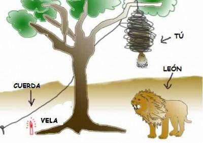 salvarse del leon