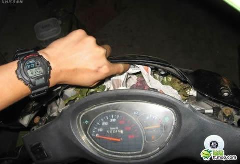 bebes-rata-casa-motocicleta-01