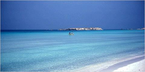 playa-india-gujrat