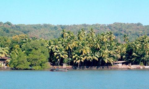 playa-india-maharashtra