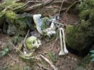 aokigahara-bosque-suicidio-japon-11