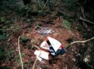 aokigahara-bosque-suicidio-japon-14