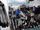 granja-produccion-pieles-bielorrusia-visones-zorros-09