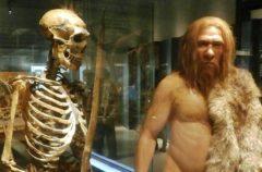 Los neandertales podrían haber desaparecido por no usar el fuego