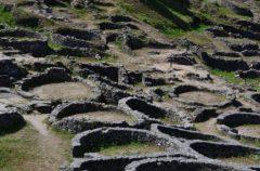Encuentran un yacimiento de animales híbridos creados por los Celtas