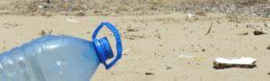 Los gusanos ayudarán a eliminar el plástico