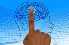 Las personas con cerebros más grandes, las más propensas a tener problemas mentales