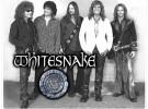 Whitesnake y su año sabático