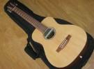 El triunfo de las guitarras mini