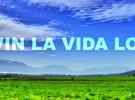 """Anders Nilsen y la canción del verano """"Salsa Tequila"""""""