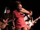 Próximos conciertos de Freedonia en España