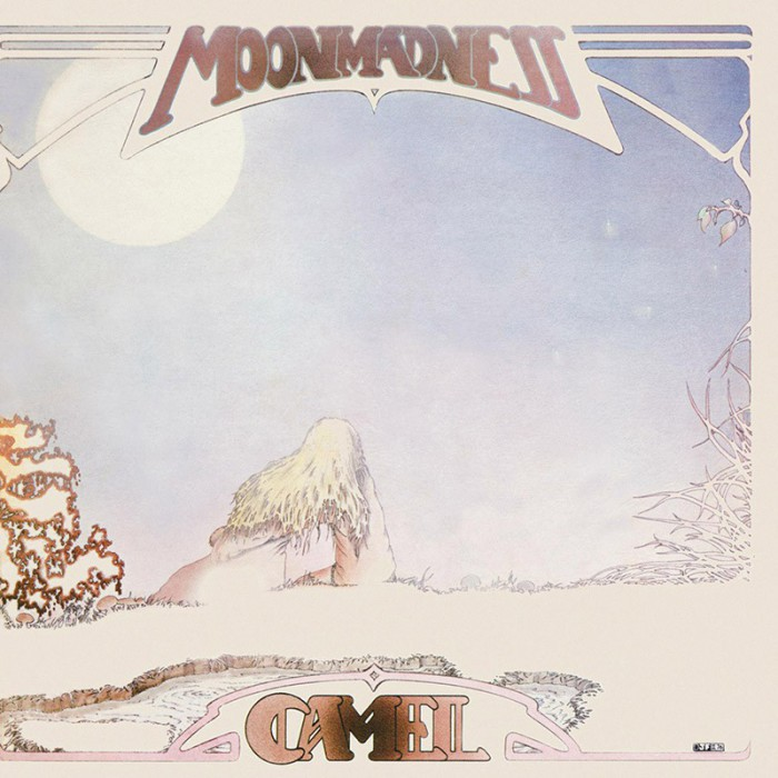camel-moon-madness-front