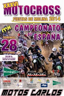 Cartel RFME MXMolina 2014