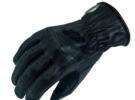 Garibaldi y sus guantes Vega Lady KP