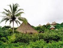 Vacunas necesarias para viajar a Colombia