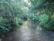Municipio de Acayucan