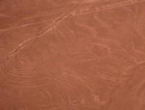 Visitar las Líneas de Nazca