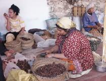 Aceite de Argán, el oro líquido de Marruecos
