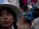 Festivales y fiestas en la Provincia de Catamarca