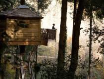 Alojamientos para disfrutar de la naturaleza: Cabañas en los árboles