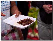 En Oaxaca puedes comer insectos