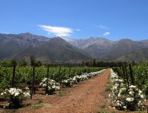 Bodegas en Santiago de Chile
