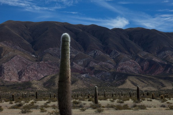 Un sitio natural en Salta