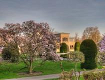 Wilhelma, el parque zoológico y jardín botánico de Stuttgart