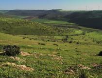 Benslimane, el pulmón verde de Chauía-Uardiga