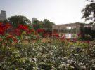 El Rosedal de Palermo