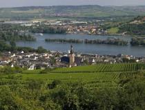 Rüdesheim, localidad de importantes viñedos