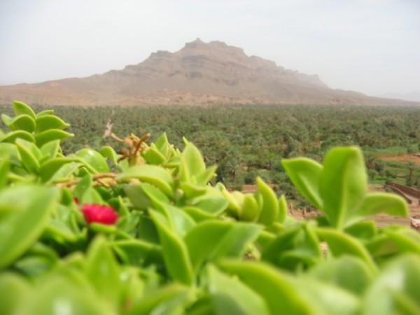 El valle del río Draa es uno de los más largos de Marruecos