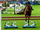 El espectáculo de los caballos en el Dublín Horse Show
