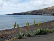 Playa Quemada: un camino hacia la tranquilidad