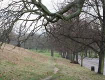 Visita el Greenwich Park