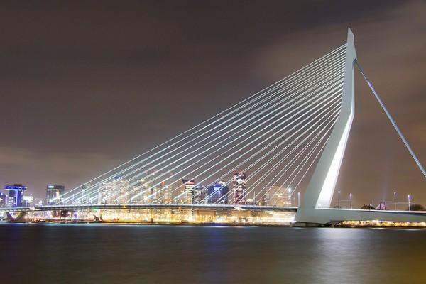 Puente Erasmo de Rotterdam de noche