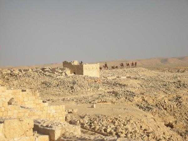 La Ruta del incienso y las ciudades del desierto del Néguev