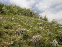 El Parque Nacional de Aggtelek