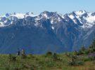 Parque Nacional Olympic, naturaleza y belleza en Washington