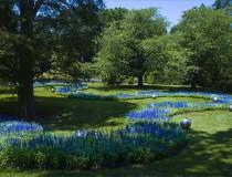 Longwood Gardens, el lugar más verde de Pennsylvania