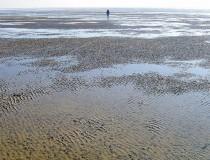 Vacaciones en el Wadden Sea