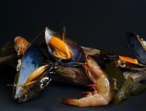 Fiestas del marisco en Galicia