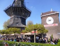 IJ, beber cerveza artesanal a los pies de un molino de Amsterdam