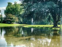 El Rheinpark de Colonia, uno de los parques más bonitos de Alemania