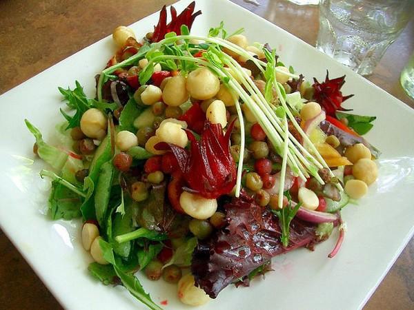 Por bushfood se conoce a la gastronomía de los aborígenes australianos